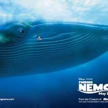 Fondo de pantalla : Nemo, Dory, la ballena