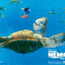 Fondo de pantalla : Nemo, Dory, la tortuga