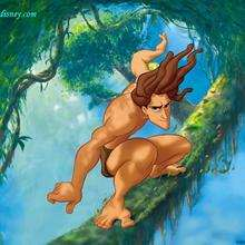 Fondo de pantalla : Tarzán resbalando entre las ramas