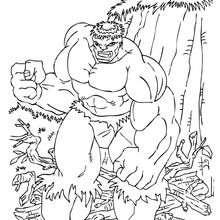 Dibujo para colorear : Hulk furioso