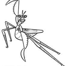 Kung Fu Mantis - Dibujos para Colorear y Pintar - Dibujos de PELICULAS colorear - Dibujos para colorear KUNG FU PANDA PELICULA - Dibujos para colorear MANTIS KUNG FU PANDA