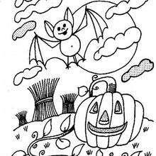 Calabaza y murcielago de Halloween - Dibujos para Colorear y Pintar - Dibujos para colorear FIESTAS - Dibujos para colorear HALLOWEEN - Dibujos para colorear MURCIELAGOS HALLOWEEN