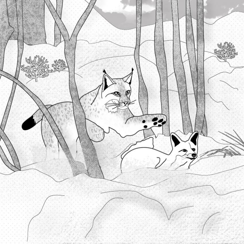 Dibujos para colorear zorro en la nieve - Renard en dessin ...