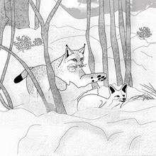 Dibujo para colorear : zorro en la nieve