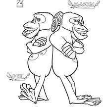 Dibujo de los chimpancés - Dibujos para Colorear y Pintar - Dibujos de PELICULAS colorear - Dibujos para colorear y pintar MADAGASCAR - Dibujos para colorear MADAGASCAR 2