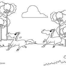 Dibujo de ponis troteando - Dibujos para Colorear y Pintar - Dibujos para colorear ANIMALES - Colorear CABALLOS - Dibujos de PONIS para colorear - PONIS para colorear e imprimir
