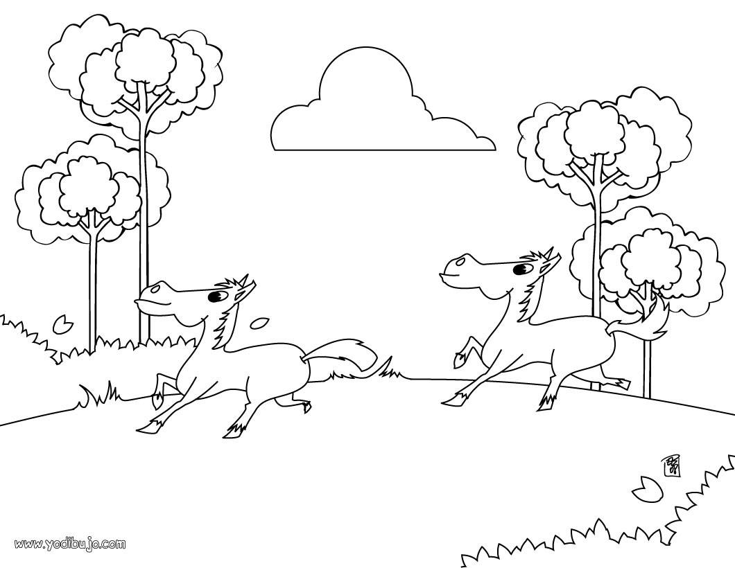 Dibujos De Ponis Para Colorear. Dibujos De Ponis Para