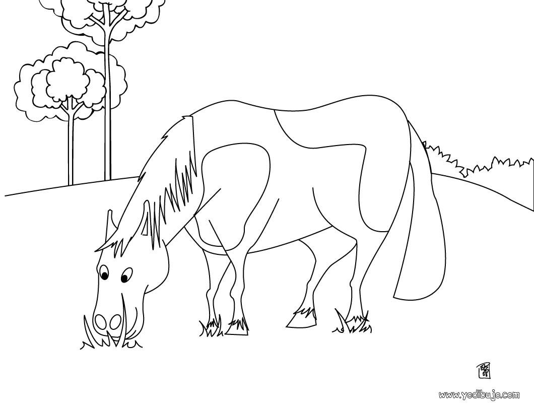 Dibujos para colorear un caballo en el campo - es.hellokids.com