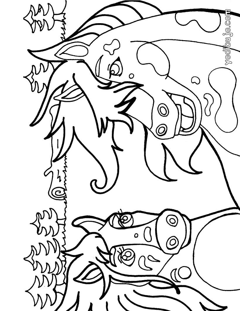 Dibujo para colorear : hermosos caballos