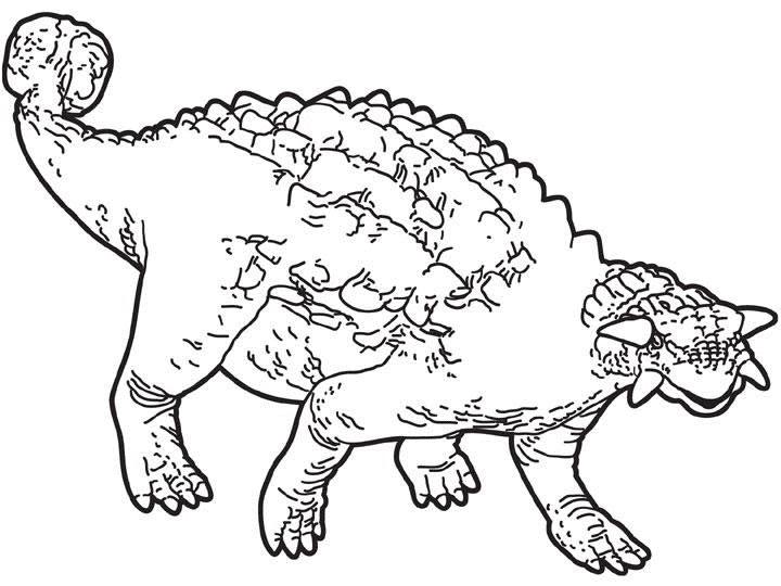 Dibujos para colorear anodontosauro  eshellokidscom