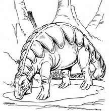 Dibujo para colorear : Estegosaurio realístico