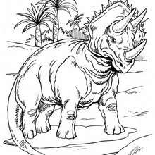 Dibujo de triceratops - Dibujos para Colorear y Pintar - Dibujos para colorear ANIMALES - Dibujos para colorear DINOSAURIOS - Pintar dinosaurio TRICERATOPS