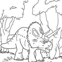 Triceratops adulto
