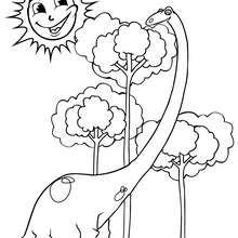 Dibujo diplodocus  - Dibujos para Colorear y Pintar - Dibujos para colorear ANIMALES - Dibujos para colorear DINOSAURIOS - Colorear dinosaurios DIPLODOCUS