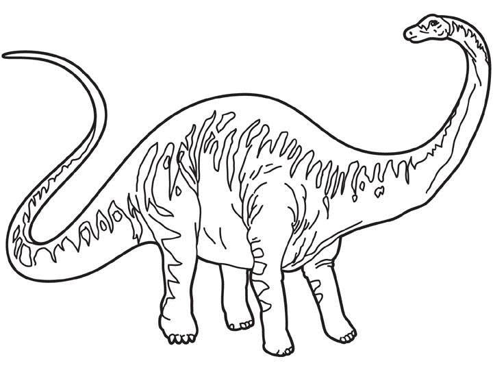 Dibujos para colorear diplodocus - es.hellokids.com