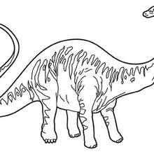 Dibujo dinosaurio diplodocus - Dibujos para Colorear y Pintar - Dibujos para colorear ANIMALES - Dibujos para colorear DINOSAURIOS - Colorear dinosaurios DIPLODOCUS