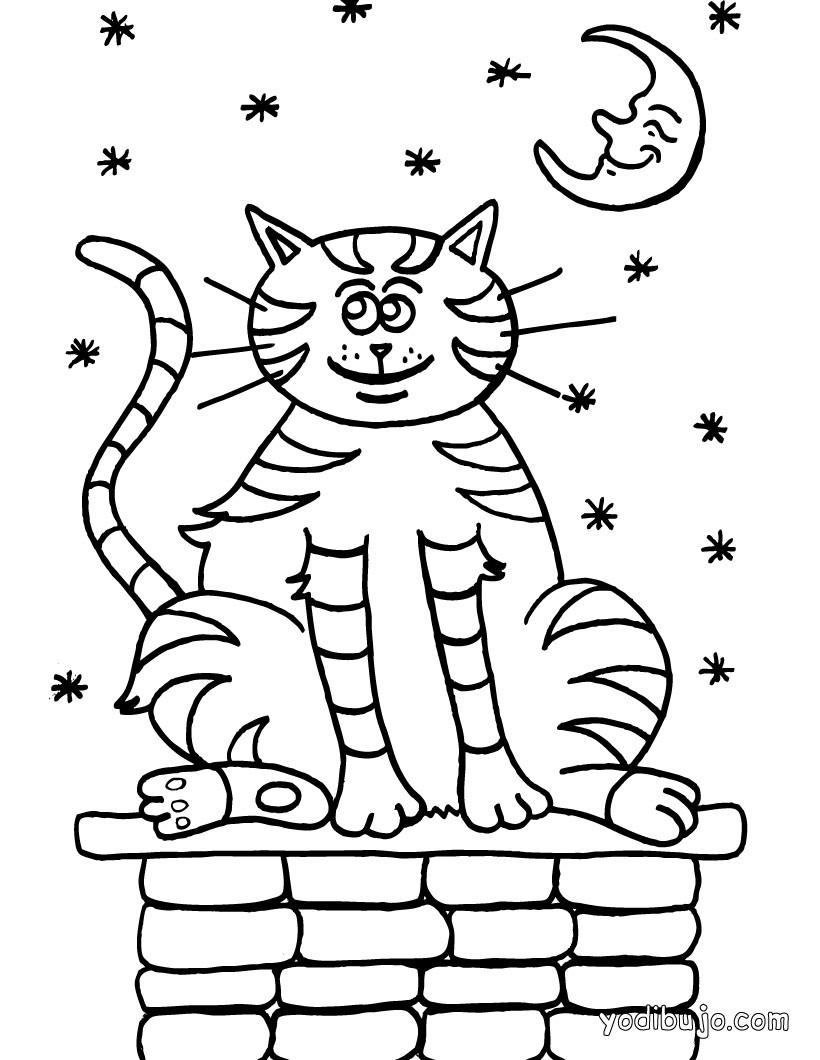 Dibujos para colorear super gato - es.hellokids.com
