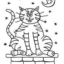 Dibujo gato debajo de la luna - Dibujos para Colorear y Pintar - Dibujos para colorear ANIMALES - Dibujos GATOS para colorear - Dibujos para colorear GATO CALLEJERO