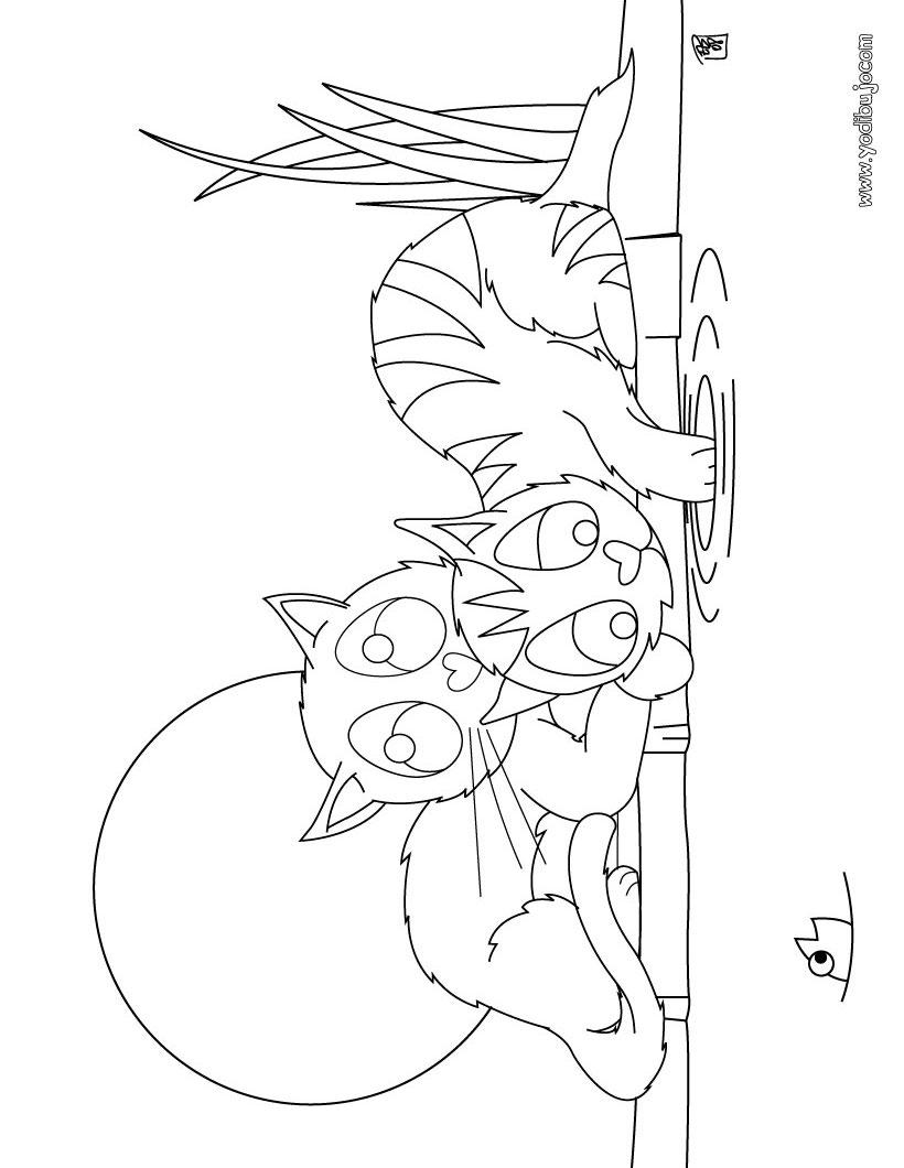 Dibujos Para Colorear 2 Gatos Cazando Un Pez En El Agua Es