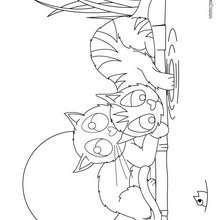 Dibujo para colorear : 2 gatos cazando un pez en el agua