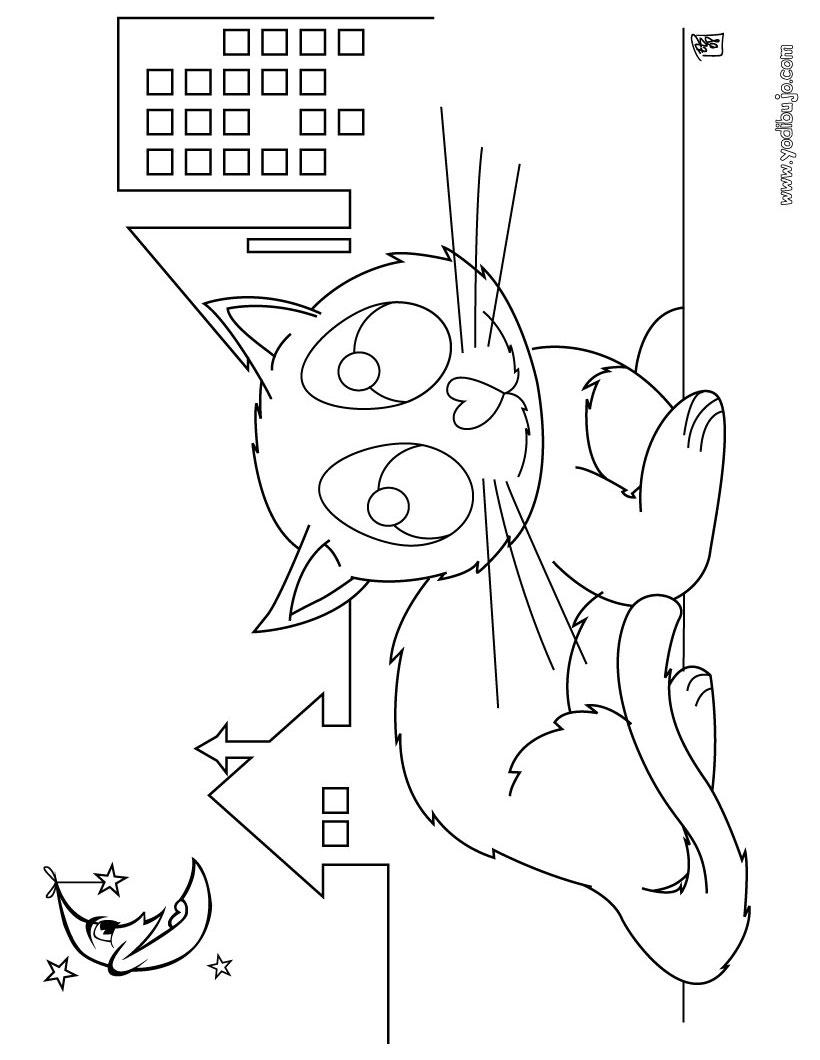 Dibujo para colorear : noche todos los gatos son pardos