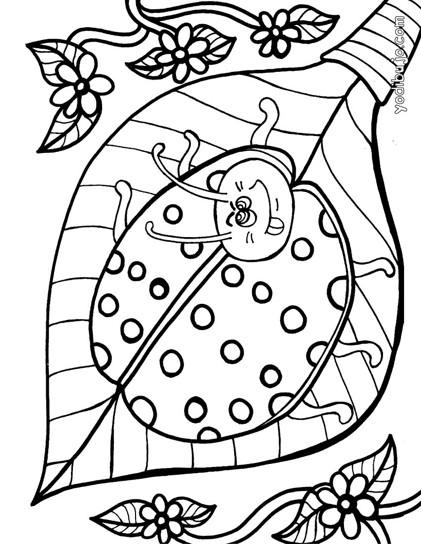 Dibujos para colorear mariquita hermosa - es.hellokids.com