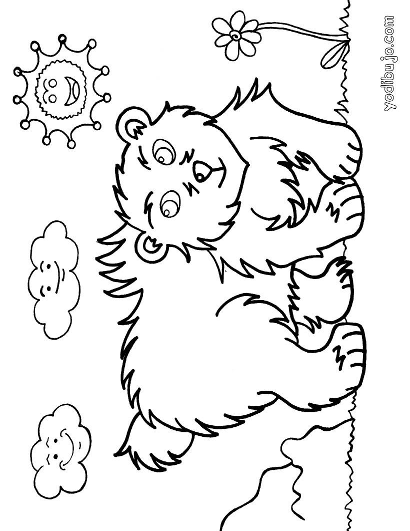 Dibujos para colorear oso - es.hellokids.com