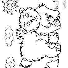 Dibujo oso - Dibujos para Colorear y Pintar - Dibujos para colorear ANIMALES - Dibujos ANIMALES SALVAJES para colorear - Dibujos ANIMALES DE LA SELVA para colorear - Colorear OSO