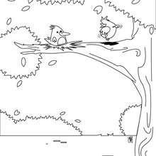 Dibujo para colorear : nido de pájaros