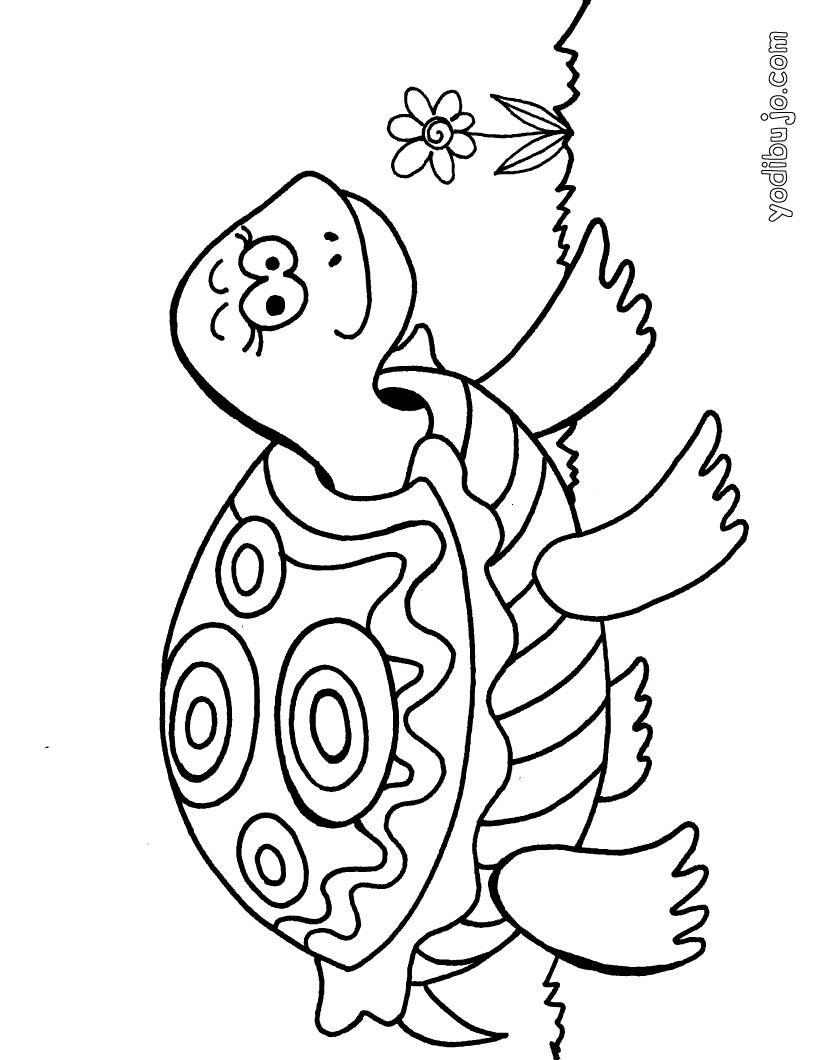tortuga Dibujos para colorear tortuga y pájaro Dibujos para colorear ...