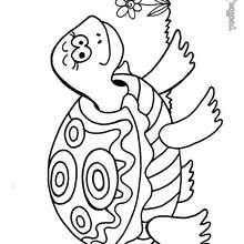 Dibujo para colorear : Tortuga