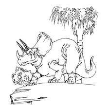 Dibujo triceratops dinosaurio - Dibujos para Colorear y Pintar - Dibujos para colorear ANIMALES - Dibujos para colorear DINOSAURIOS - Pintar dinosaurio TRICERATOPS