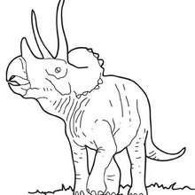 Dibujo de otro triceratops - Dibujos para Colorear y Pintar - Dibujos para colorear ANIMALES - Dibujos para colorear DINOSAURIOS - Pintar dinosaurio TRICERATOPS