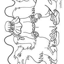 Dibujo la BEDUINA con su camello para colorear - Dibujos para Colorear y Pintar - Dibujos para colorear PERSONAJES - Dibujos para colorear y pintar PERSONAJES - Varios personajes para colorear