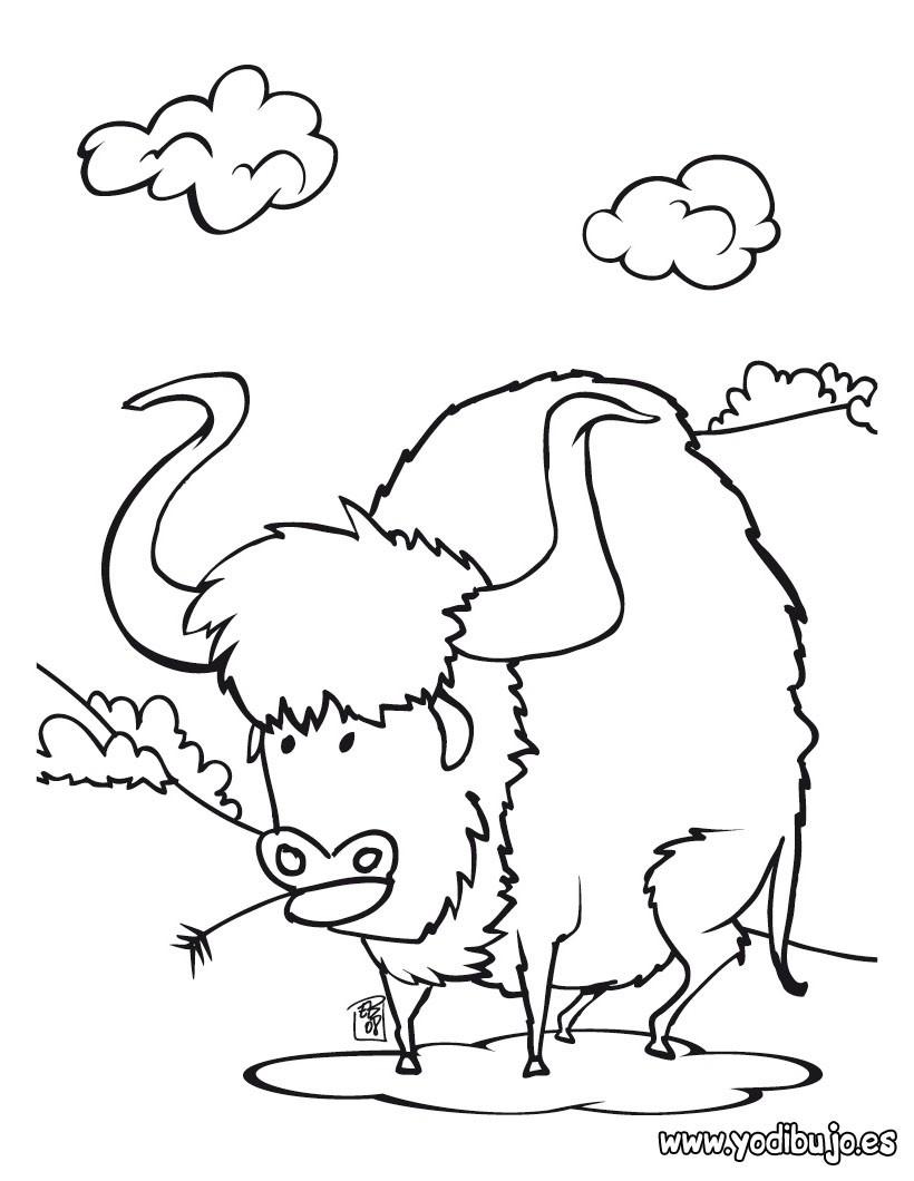 Dibujos para colorear bufalo - es.hellokids.com