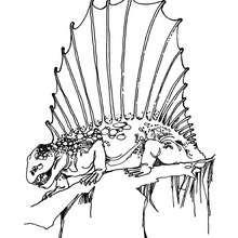 Dibujo Dimetrodon - Dibujos para Colorear y Pintar - Dibujos para colorear ANIMALES - Dibujos para colorear DINOSAURIOS - Pintar dinosaurios DIMETRODON