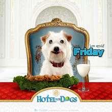 Fondo de pantalla : Hotel para perros: Viernes, Friday