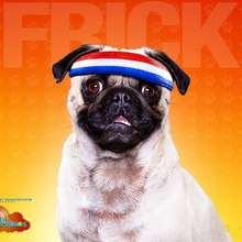 Fondo Hotel para perros: Frick - Dibujar Dibujos - Dibujos para DESCARGAR - FONDOS GRATIS - Fondos e íconos: Hotel para Perros