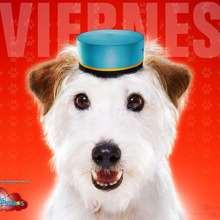 Hotel para perros: Viernes - Dibujar Dibujos - Dibujos para DESCARGAR - FONDOS GRATIS - Fondos e íconos: Hotel para Perros