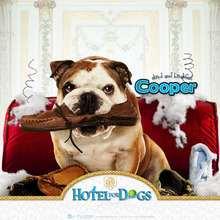 Hotel para perros: Cooper 2 - Dibujar Dibujos - Dibujos para DESCARGAR - FONDOS GRATIS - Fondos e íconos: Hotel para Perros