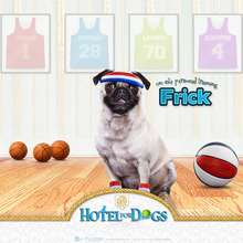 Fondo Hotel para perros: Frick basketball - Dibujar Dibujos - Dibujos para DESCARGAR - FONDOS GRATIS - Fondos e íconos: Hotel para Perros
