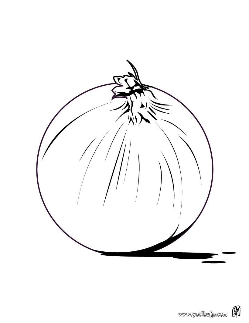 Dibujo para colorear : una cebolla
