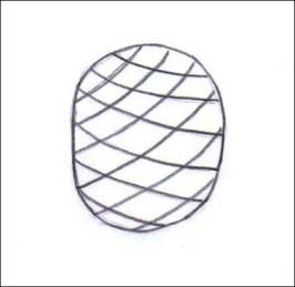 piña3