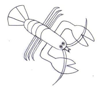 Dibuja un bogavante - Dibujar Dibujos - Aprender cómo dibujar paso a paso - Dibujar dibujos ANIMALES - Dibujar los animales del mar