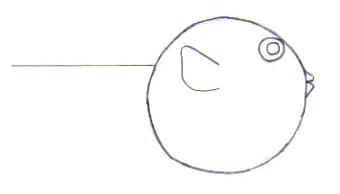 Dibuja un pez globo - Dibujar Dibujos - Aprender cómo dibujar paso a paso - Dibujar dibujos ANIMALES - Dibujar los animales del mar