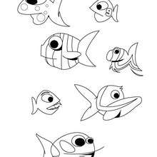 Dibujo para colorear : un grupo de peces