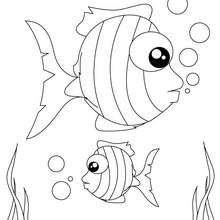 Dibujo para colorear : peces rayados
