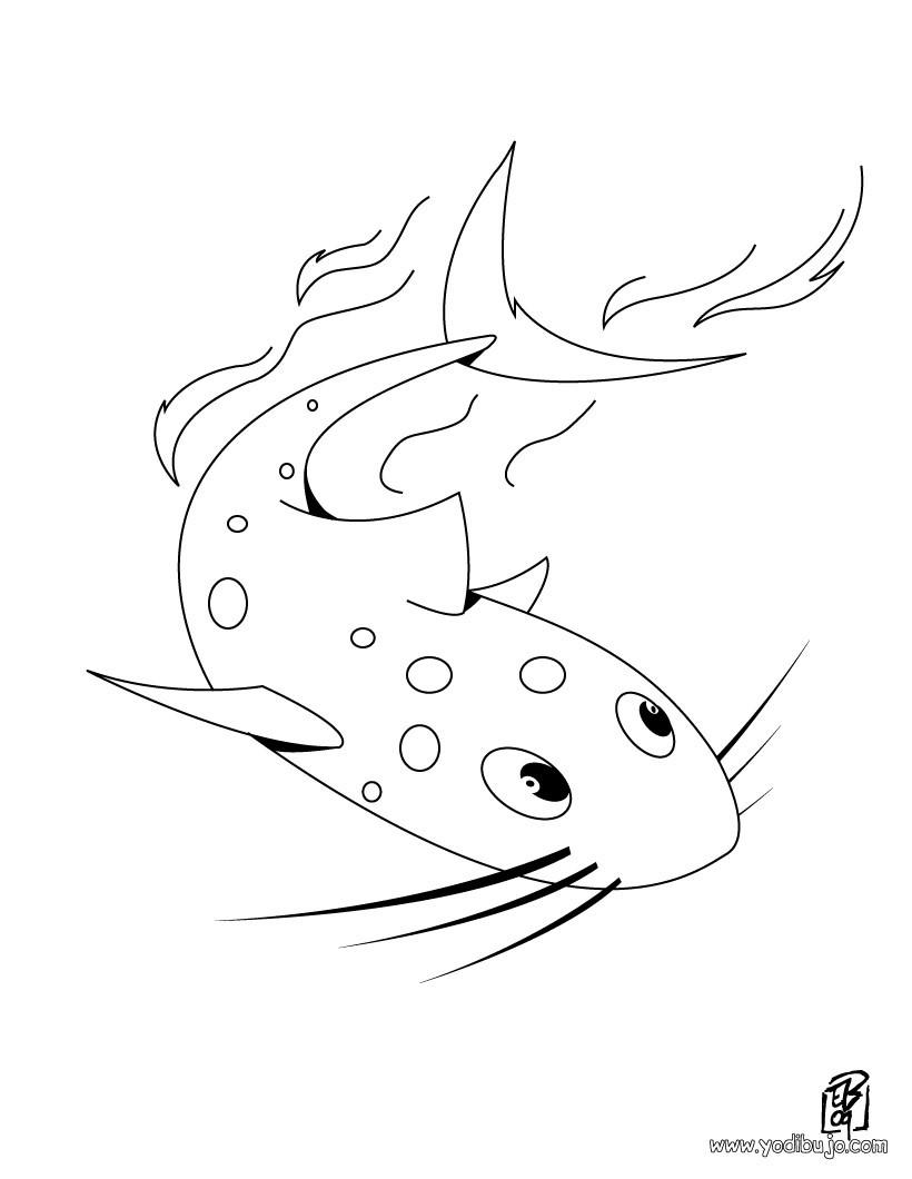 Dibujo de un pez gato - Dibujo para pintar PEZ GATO