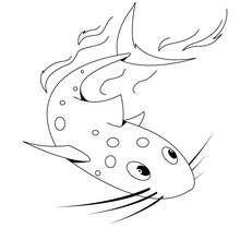 Dibujo de un pez gato - Dibujos para Colorear y Pintar - Dibujos para colorear ANIMALES - Dibujos ANIMALES MARINOS para colorear - Colorear PECES - Dibujo para pintar PEZ GATO