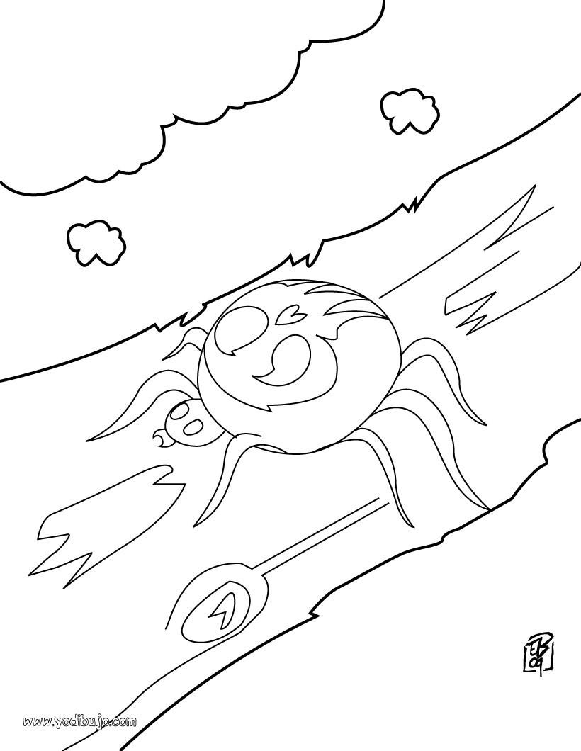 Dibujo para colorear : mosca pequeña